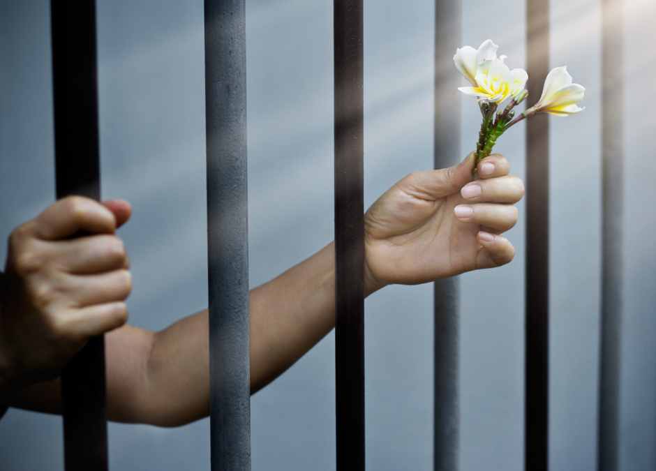 Weekly News: Client Recovers After Years of Substance Abuse & Prison