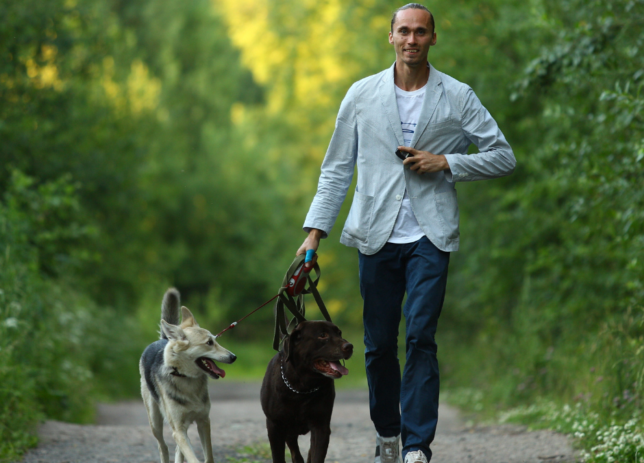 Weekly News: Pet Program Facilitates Client to Attend Recovery Program and Reunification with His Two Dogs